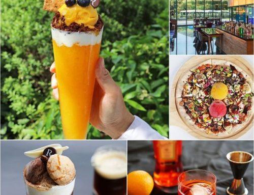 夏天吃冰|冰棒、冰調酒、雪糕、冰淇淋披薩,五星級飯店六福萬怡&士林萬麗暑假限定活動250元起。編輯的日常